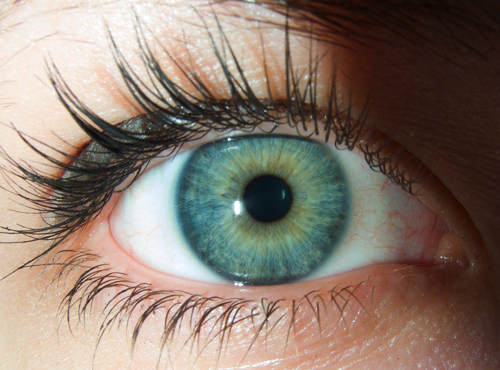 Vaselina cosmetica sotto occhi